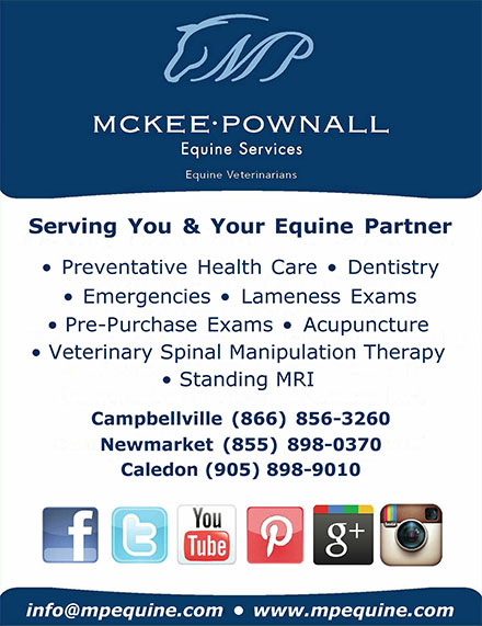 Mckee-Pownall Equine Services Equine Veterinarians